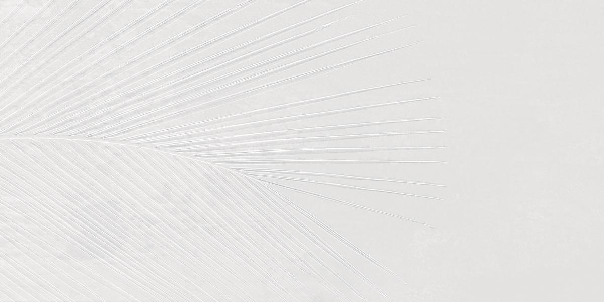 INTERO x-white Dekor Fossil 1 Image