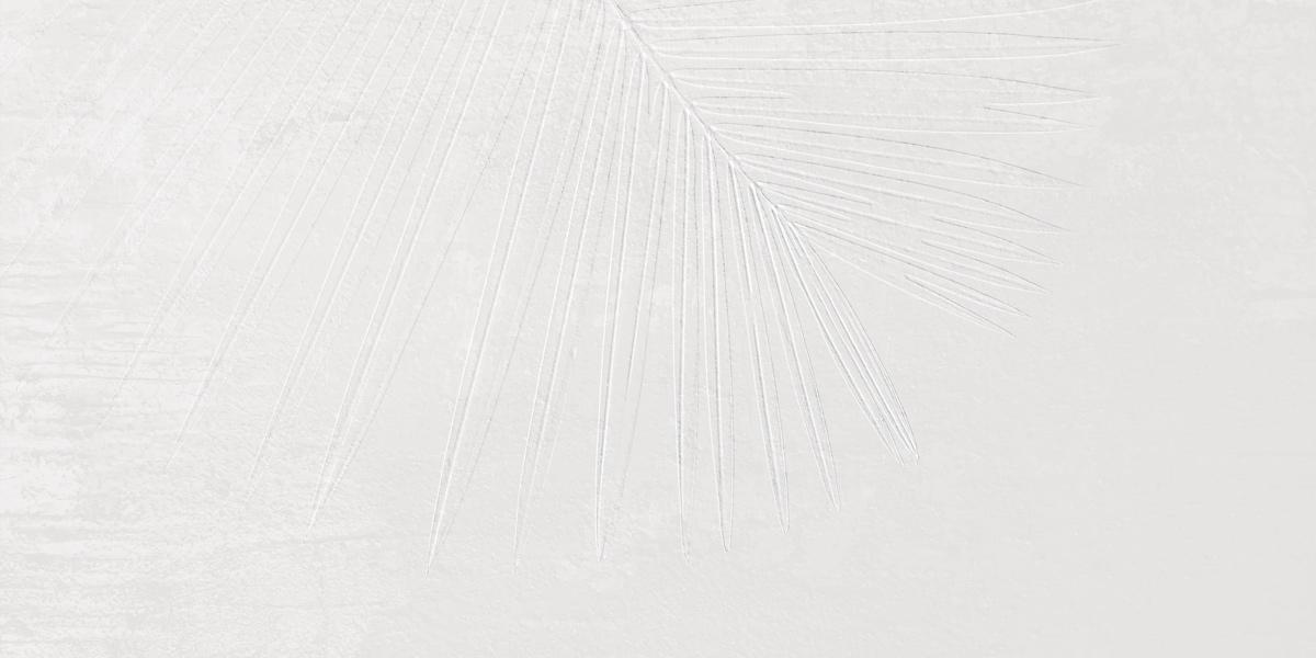 INTERO x-white Dekor Fossil 4 Image
