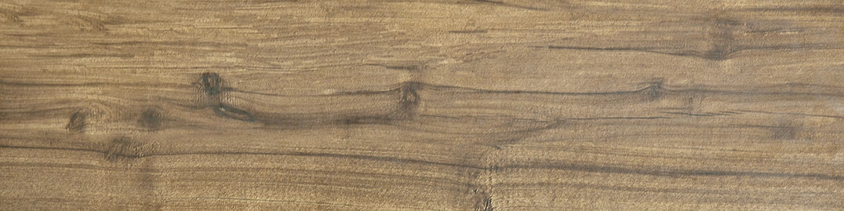 ARBOR braun Image