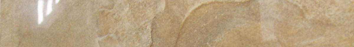 LEA Gold Image